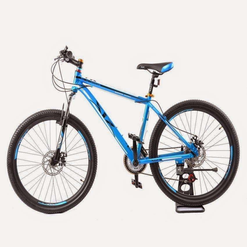 XiX Swarm Mountain Bike