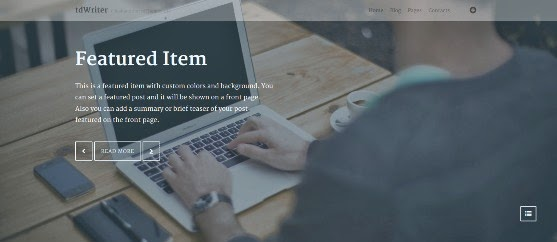 tdWriter Responsive WordPress Theme