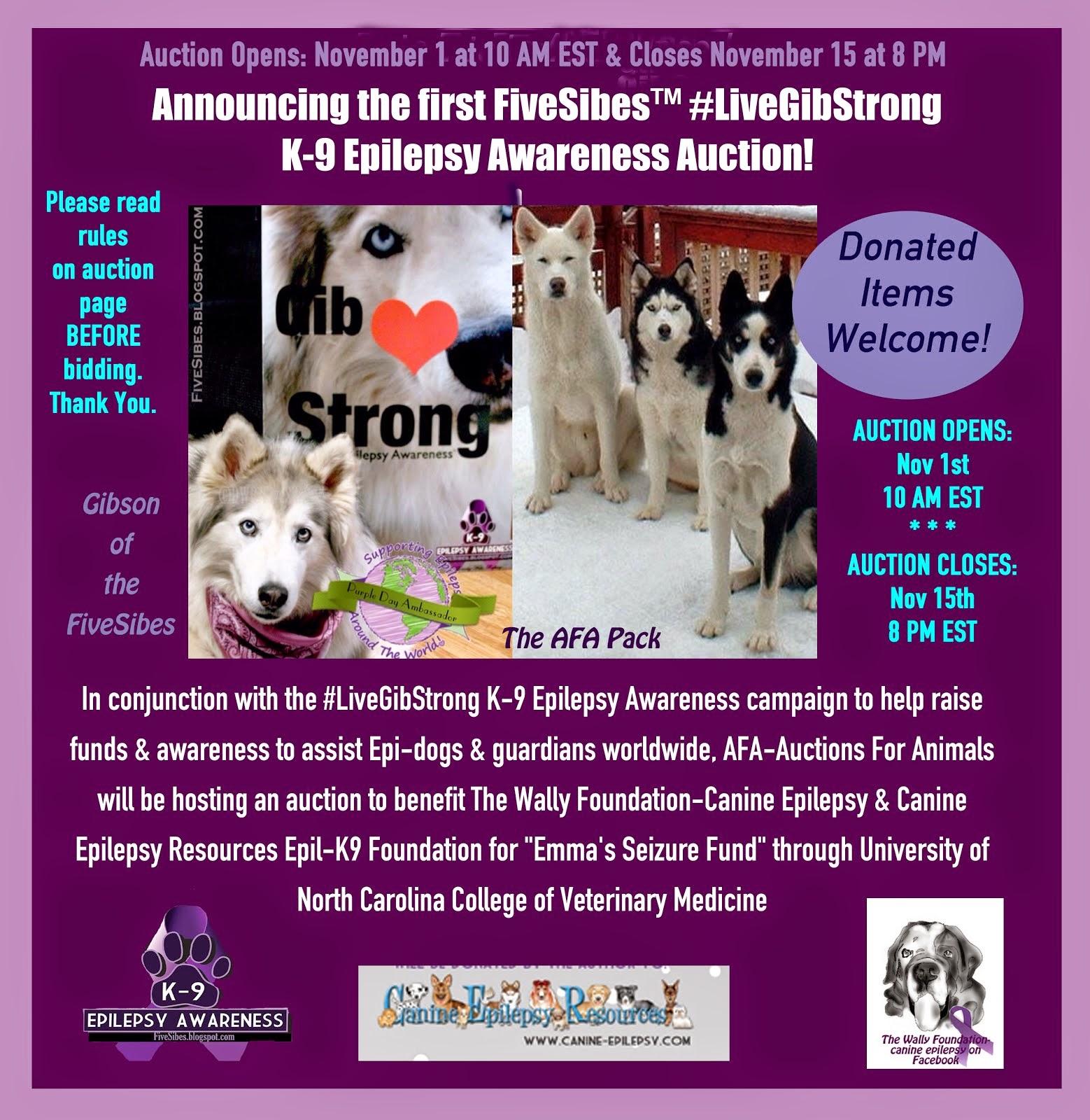 FiveSibes #LiveGibStrong K-9 Epilepsy Awareness Fundraiser