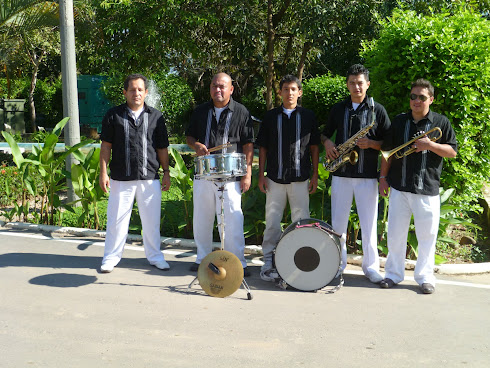 Banda Pelayeros del Palmar