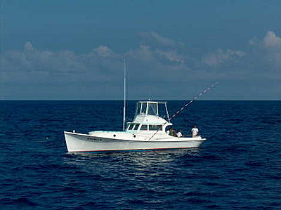 Fishin 39 w the redneckangler the best sport fishing boats for Best sport fishing boats