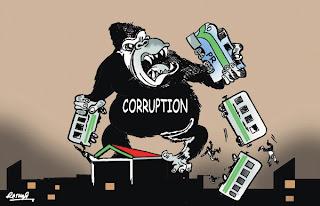 The News Cartoon-2 30-7-2011