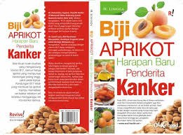 biji aprikot terbukti dapat menyembuhkan penyakit kanker