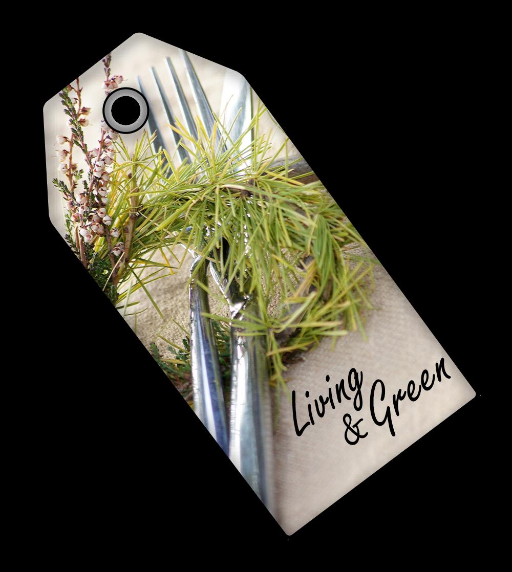 Hier gibt es jede Menge zu entdecken!!! Besucht doch bitte mein Magazin! Living & Green