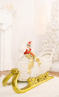 Winter Swan Sleigh - Mikkean Photography prop