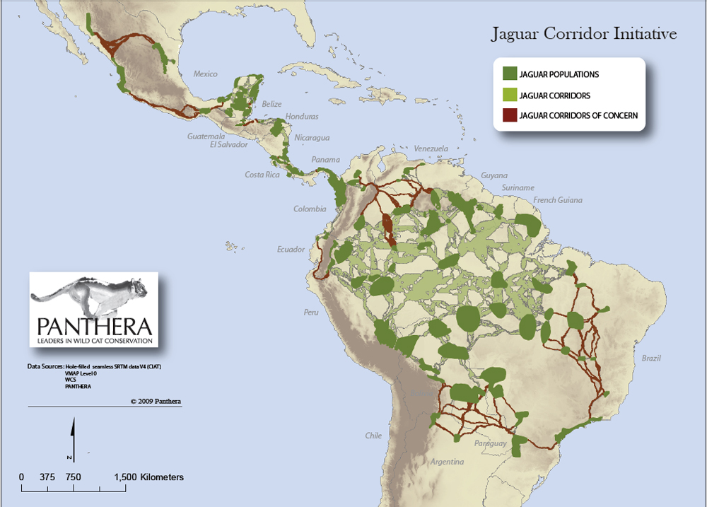 What Is The Future Of Defensores Del Chaco National Park - Map argentina national parks