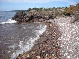 Marine Biology and Co.: Cobble Beaches