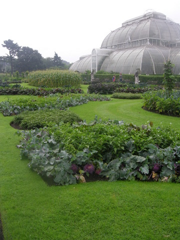 El Real Jardín Botánico de Kew (Londres) | Cuaderno de campo