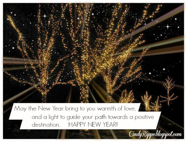 Illuminations display at Morton Arboretum, A positive destination in 2014, Jeremiah 29:11, New Year quote unknown author, Cindy Rippe, Florals, Family and Faith