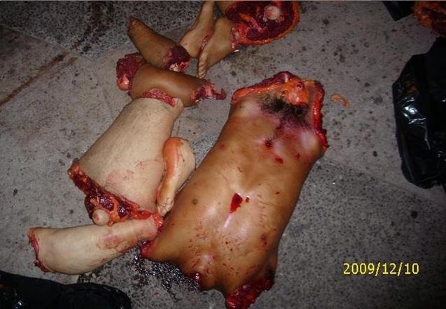 Mexican drug cartel torture