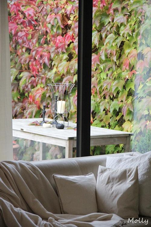 molly herbstdeko f r drinnen und drau en ii. Black Bedroom Furniture Sets. Home Design Ideas