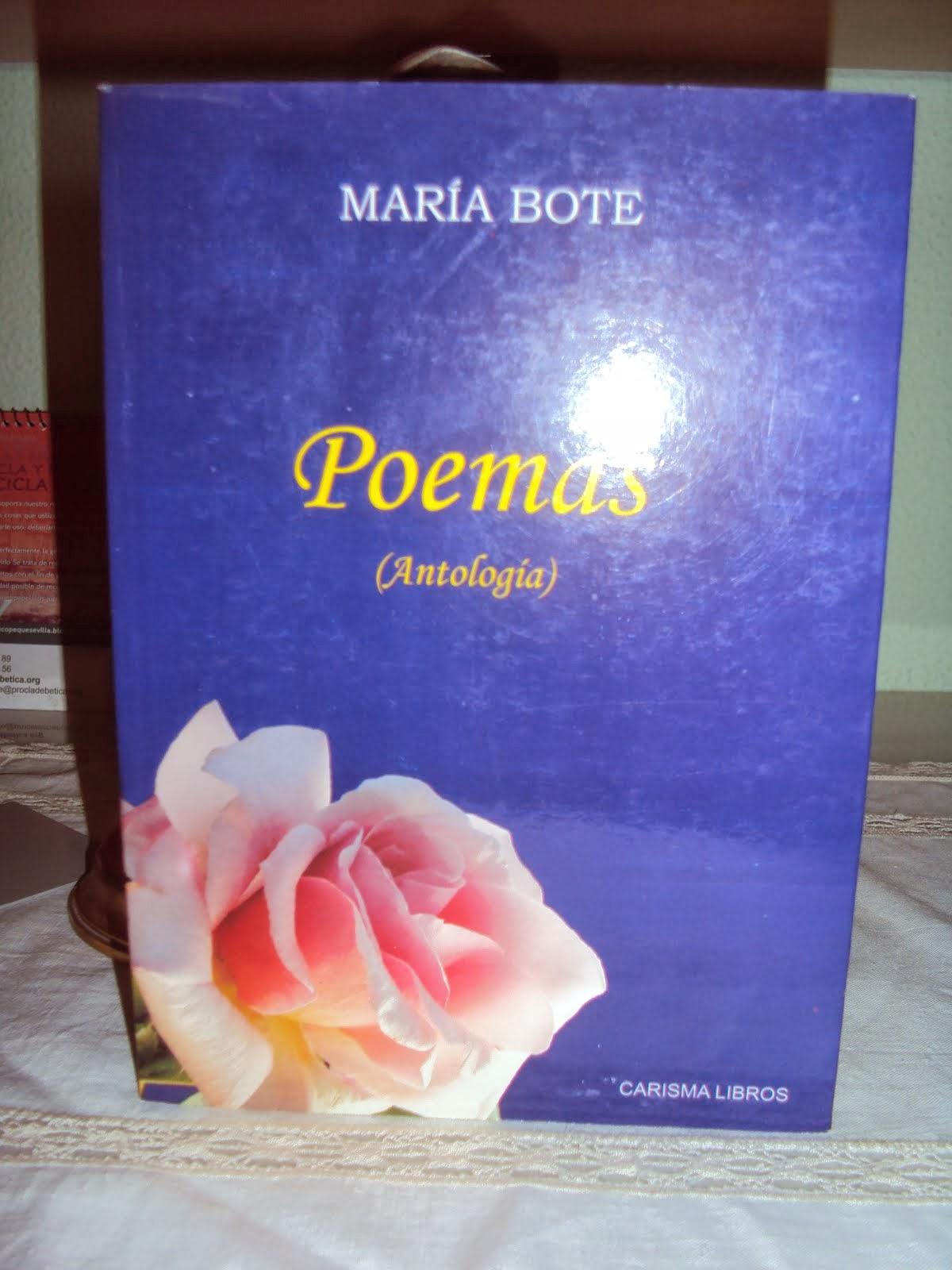 Mi primer libro editado