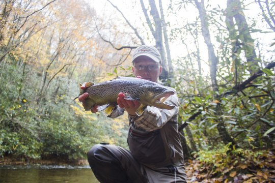 Photo of the Month: Fall on the Tellico