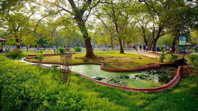 Khám phá vườn thú Nehru ở Hyderabad Ấn Độ