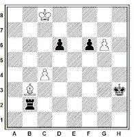 Estudio artístico de ajedrez de A. A. Troitzky, Shakhmaty Zjurnal, 1896