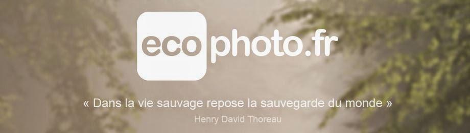 http://www.ecophoto.fr/