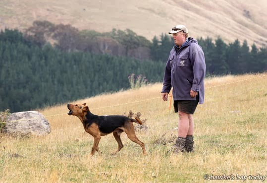 Quentin Hunter, with Storm, on the Zig Zag Hunt event  photograph