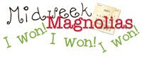 Midweek Magnolias ~ I won with my anything but a card ~ gift bag