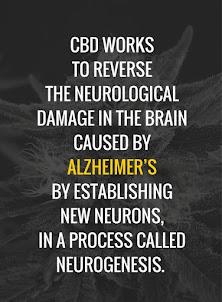 Reverses Neurological Damage