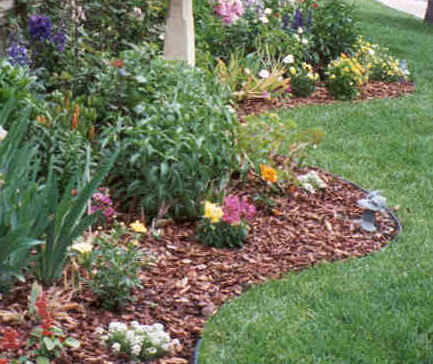 D i y d e s i g n curb appeal part 2 the landscaping for Flower bed landscaping ideas