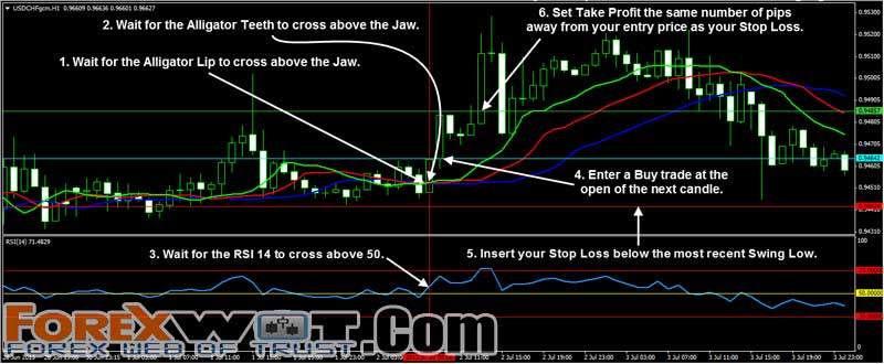 make millions in forex trading pdf
