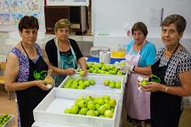 Cuineres voluntàries 2014: Les renten i eixuguen