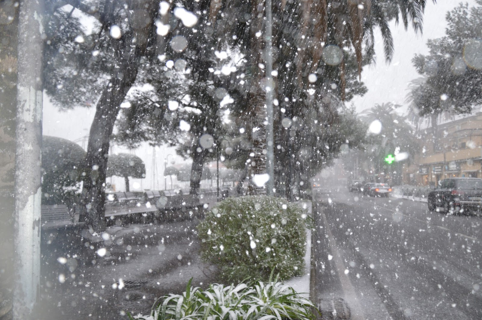 Nevicata 11 febbraio 2013