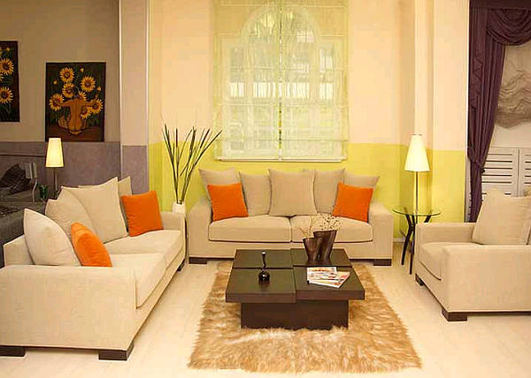 Grey living room color scheme