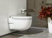 Roca In-Tank Meridian toilet