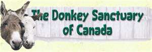 MY SPONSORED DONKEYS from