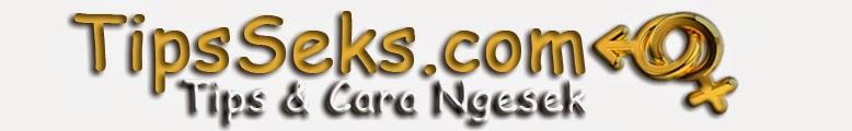 TipsSeks.com