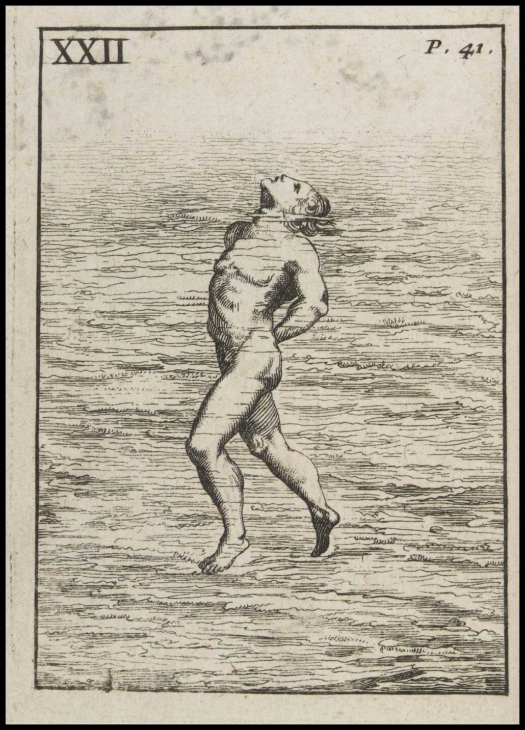 engraved swimmer illustration