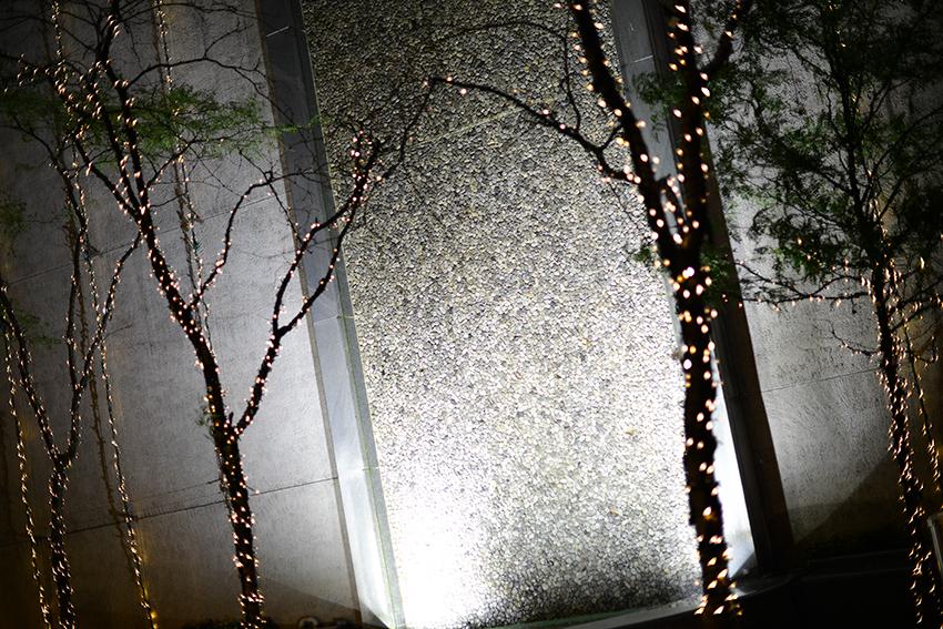 the petticoat new york diary photo night lights