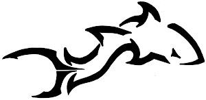 Shark Armory