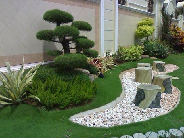 bonsai untuk taman rumah minimalis