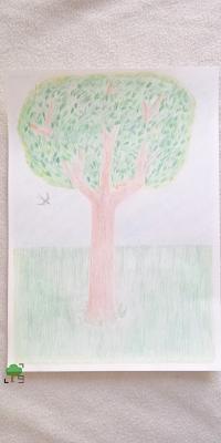 drzewo, wiewiórka, jaskółka, prezent, święta,