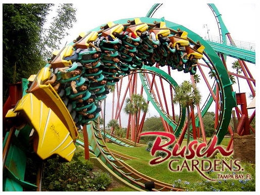 Us online freebies busch gardens coupons have fun for free for Best day go busch gardens tampa