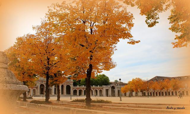 otoño en Aranjues