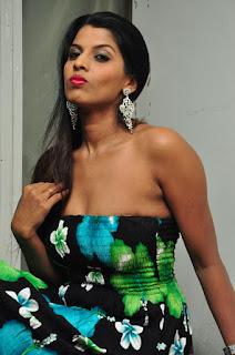 Manisha Pillai in Half Top Gown Spicy Pics