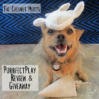 The Chesnut Mutts Purrfectplay Review and Giveaway