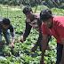 ΜΕΓΑΛΗ ΕΘΝΙΚΗ ΤΑΠΕΙΝΩΣΗ!!! «Μετανάστες» από το Μπαγκλαντές διασύρουν την Ελλάδα στο Ευρωπαϊκό Δικαστήριο για « συνθήκες δουλείας»!!!!