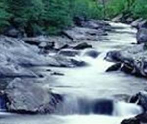 Arti Mimpi Melihat Air Sungai Melimpah