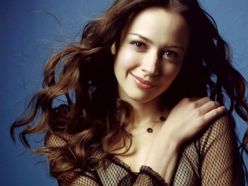 picture world: amy acker hd wallpapers free download