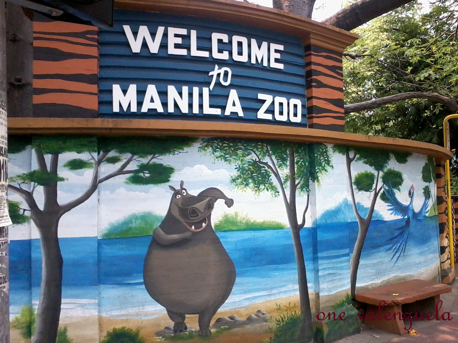 the plight of manila zoos elephant By raising awareness of the plight of as the largest habitat in the history of the la zoo, elephants of we invite you to visit your los angeles zoo today to.