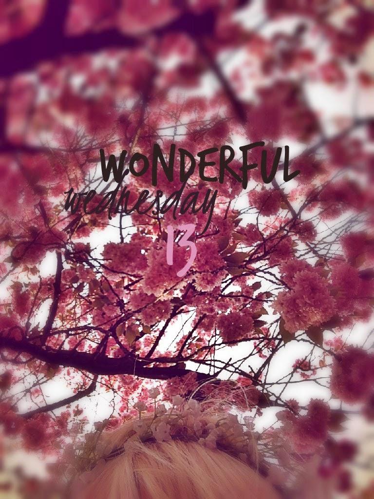 Wonderful Wednesday 13