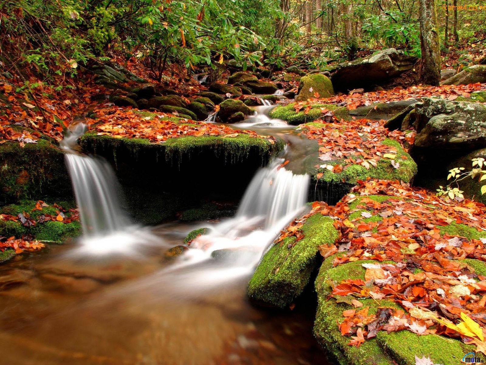 waterfalls wallpapers most beautiful - photo #12