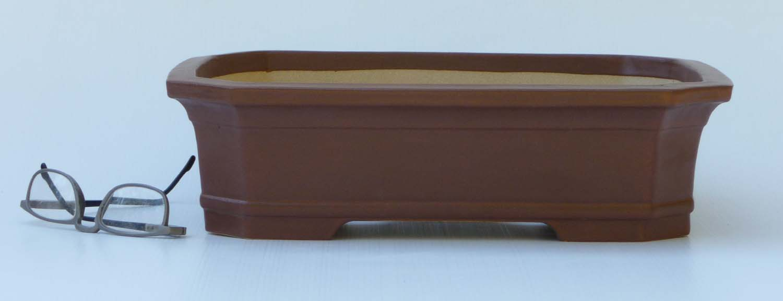 Bonsai Amp Pottery August 2015