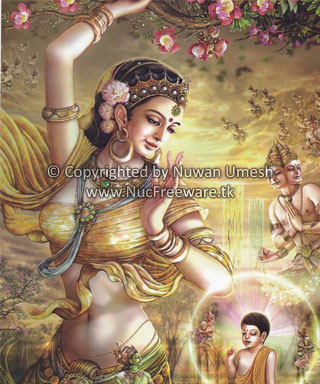 ශ්රී සුගත ධර්මෝදය දහම් පාසල: Lord Buddha - Conception and ...