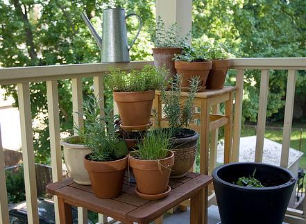 Mini jardines espacios vivos - Estantes para macetas ...