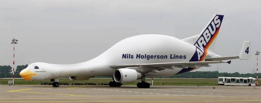 Mungkin pesawat yang satu ini lebih suka di air daripada di udara